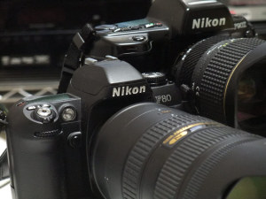 Nikon F80D入手