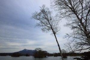 大沼公園から望む駒ケ岳